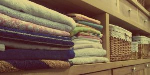 The Economics of Domesticity